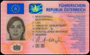 numero de permis de conduire